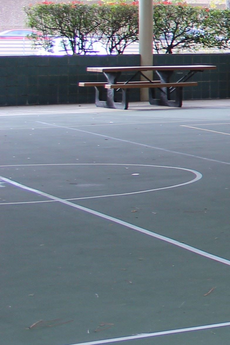 Countryside Basketball Court